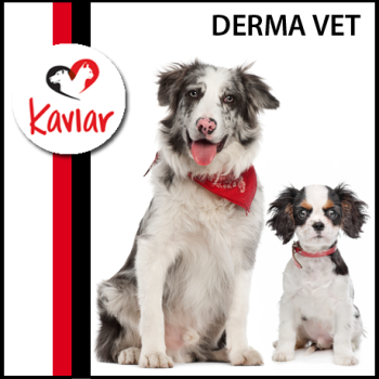 Derma_vet_kaviar