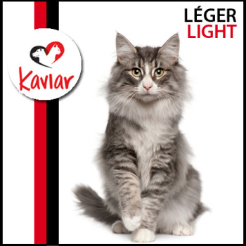 LEGER-LIGHT
