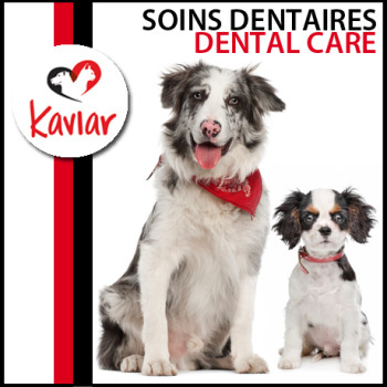 SOINS-DENTAIRES-DENTAL-CARE