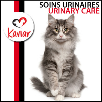 SOINS-URINAIRES-urinary-care