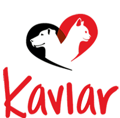 Kaviar