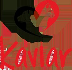 kaviar-logo-footer